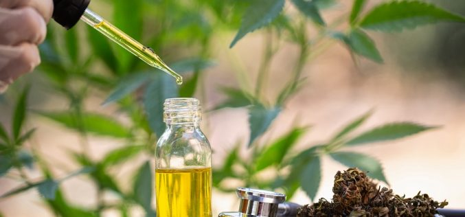 Our cbd oils are suitable for health standards examined with details!