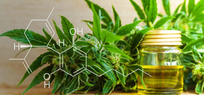 Things people must know about CBD oil before using it